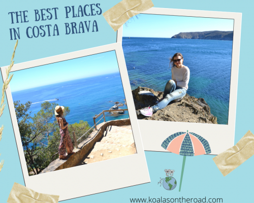 The best places in Costa Brava - koalas on the road