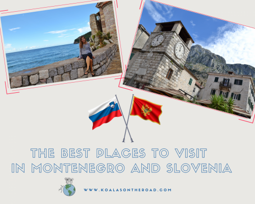 The best places to visit in Montenegro and Slovenia - koalas on the road