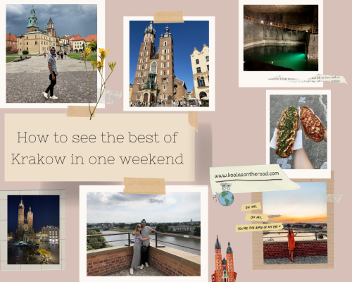How to see the best of Krakow in one weekend- koalas on the road