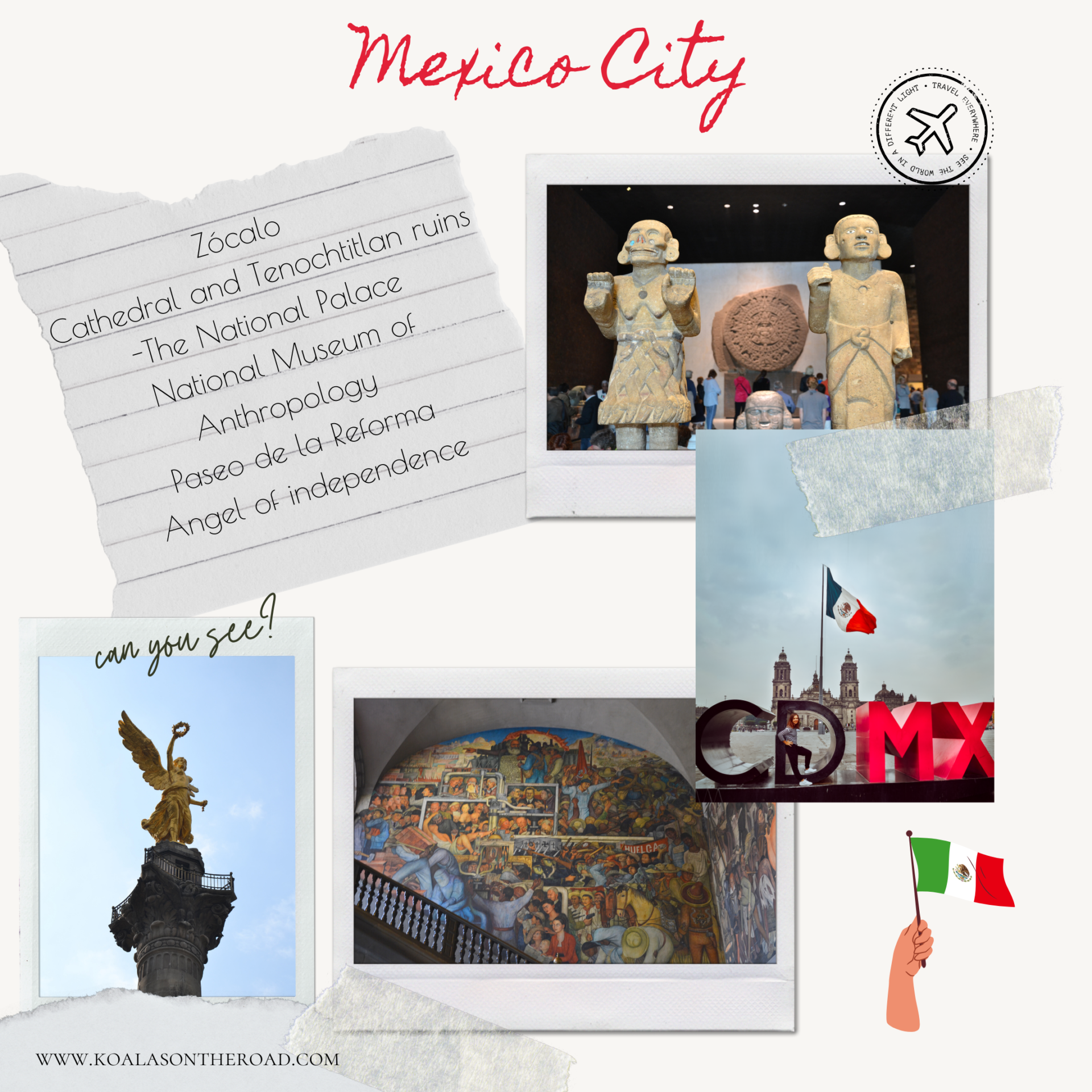 The best things to do in and around Mexico City - koalas on the road