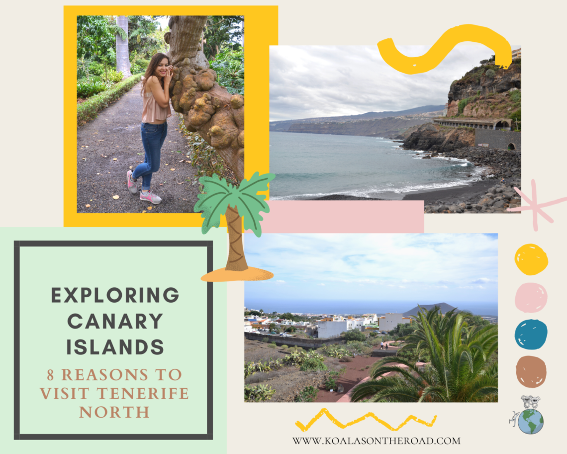 Exploring Canary Islands - 8 reasons to visit Tenerife North
