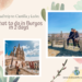 A road trip to Castilla y León - what to do in Burgos in 2 days - koalas on the road