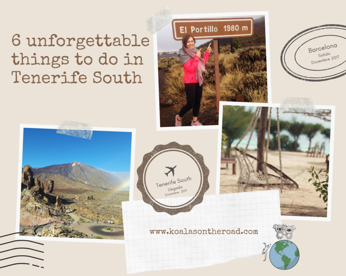 6 unforgettable things to do in Tenerife South
